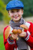 Mushrooms picking, season for mushrooms — Stock Photo