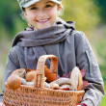 ������, ������: Mushrooms picking season for mushrooms