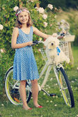 Summer Cycling - lovely girl with dog and bicycle  in rose garde — Stock Photo