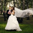 Groom and bride in park — Stock Photo #26613525