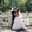 Groom and Bride in a park — Stock Photo #26613125