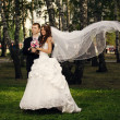 Groom and bride in park — Stock Photo