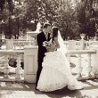 Stock Photo: Groom and Bride in a park