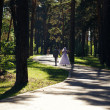 Newlyweds walking - Lizenzfreies Foto