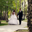 Stock Photo: Newlyweds walking in park.
