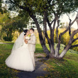 Newly married couple posing in autumn park - Foto de Stock