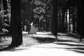 新婚夫妇走 — 图库照片