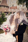 Beautiful bride and groom embracing — Foto de Stock