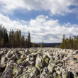 River of stone — Stock Photo
