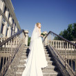 Beautiful bride — Stock fotografie #30494101