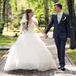 newlyweds walk — Stock Photo