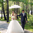 Foto Stock: Newlyweds walk