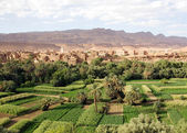 Morocco landscape — Stock Photo