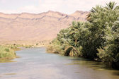 Morocco Draa river landscape — Stock Photo