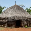 Traditional african hut — Stock Photo #22792774
