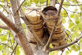 Colmena hecha hombre tradicional — Foto de Stock