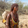 African tribal woman — Stock Photo #24319065