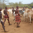 African men and cattle — Stock Photo #24790401