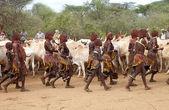 Ganado vacuno y las mujeres africanas — Foto de Stock