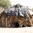 African hut — Stock Photo #25810865