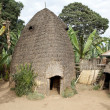 African hut — Stock Photo #26612323