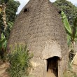 African tribal hut — Stock Photo #26612483