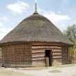 African hut — Stock Photo #26612805