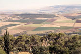 Israel landscape — Stock Photo