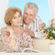 Beautiful elderly couple resting at home — Foto Stock