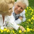 Two nice enjoy union with nature — Stock Photo