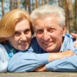 Interestig older are enjoying the air — Stock Photo