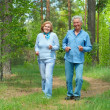 Stock Photo: Great older are enjoying fresh air