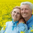Stock Photo: Gorgeous older are enjoying fresh air