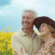 Stock Photo: Elegant older are enjoying fresh air