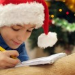 Boy in the Christmas hat — Stock Photo #12829726