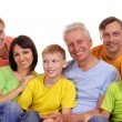 Royalty-Free Stock Photo: Big Family Portrait
