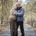 Happy aged couple — Stock Photo #29177989