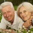 Attractive aged couple in the middle of the lawn — Stock Photo