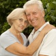 Sweet elderly couple in the park — Stock Photo