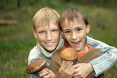 Two young boys gather mushrooms — Stok fotoğraf