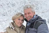 Couple on a walk in winter — Stock Photo
