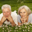 Amusing old couple in the middle of the lawn — Stock Photo