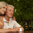 Fine older couple sitting on the veranda — Stock Photo