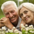 Glad old couple in the middle of the lawn — Stock Photo