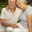Amusing aged couple in the middle of the lawn — Stock Photo #29190761