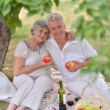 Loving aged couple — Stock Photo