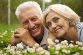 Casal de velhos ainda bem no meio do gramado — Fotografia Stock
