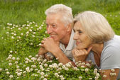 Interesting old couple in the middle of the lawn — Stock Photo