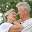 Loving aged couple on a background of trees — Stock Photo