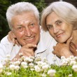 Adorable old couple in the middle of the lawn — Stock Photo